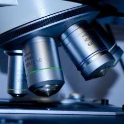 ביו-פפטידים אסתטיקה רפואית