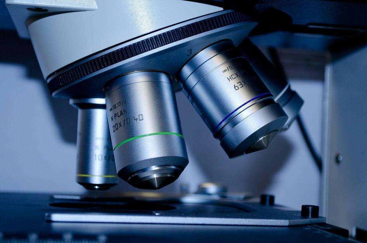 ביו-פפטידים תחת מיקרוסקופ